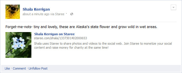 screenshot- Staree share